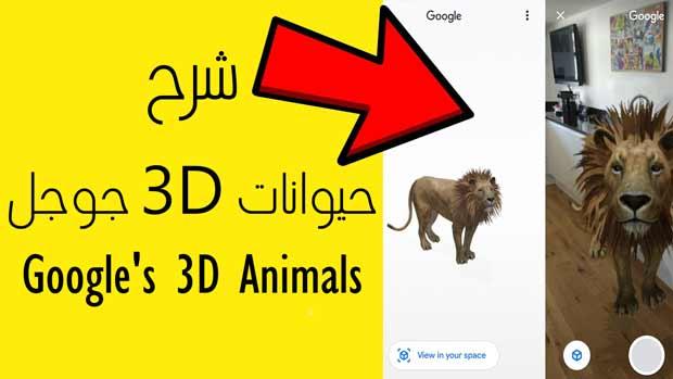 حيوانات 3D جوجل