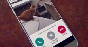 استبدل نغمة الهاتف بفيديو رائع للقطط للترفيه