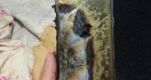 Samsung-Galaxy-Note-7-ExplodedSamsung-Galaxy-Note-7-Exploded